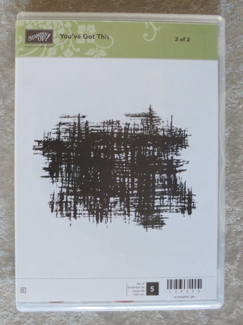 You've Got This stamp set from Stampin' Up! also available in wood mount