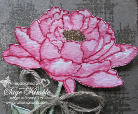Watercolored flower from You've Got This stamp set from Stampin' Up!