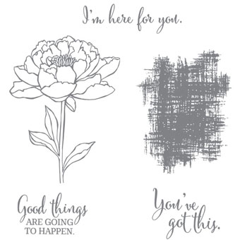 Click here to order You've Got This Stamp Set from Stampin' Up!  Also available in wood mount