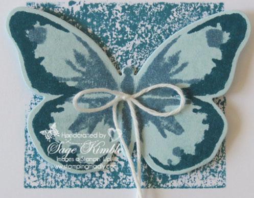 Watercolor Wings stamp set detail