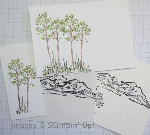 Stamping Madly experiments with In the Meadow stamp set from Stampin' Up!