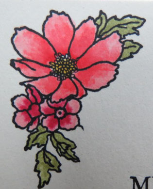 Flower detail from Timeless Love all occasions card from Stamping Madly