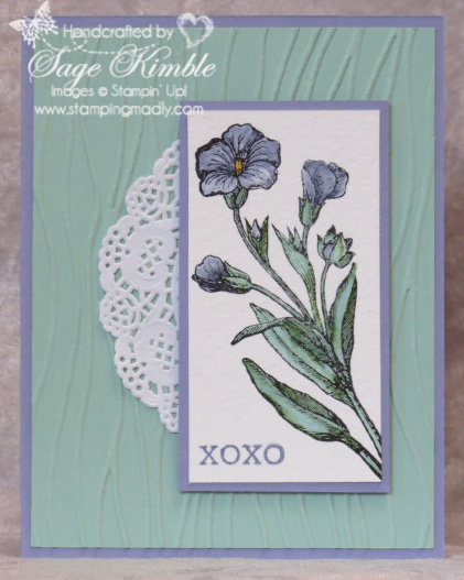 Handmade all-occasions card from Stamping Madly, using the Butterfly Basics stamp set from Stampin' Up!