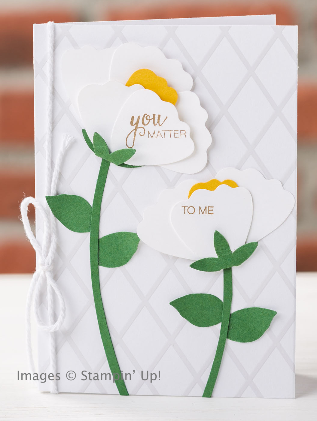 Save 25% when you purchase Blossom Builder Punch from Stampin' Up!, 1 week only!
