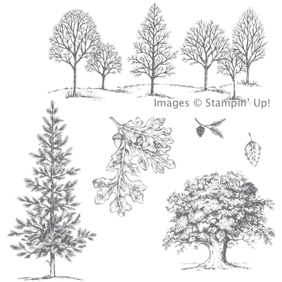 Click here to order the Lovely as a Tree Stamp Set from Stampin' Up!