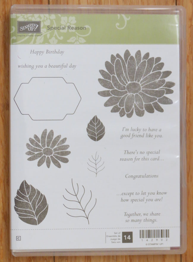 Special Reason Stamp Set from Stampin' Up!, available starting January 4th in the 2017 Occasions Catalog