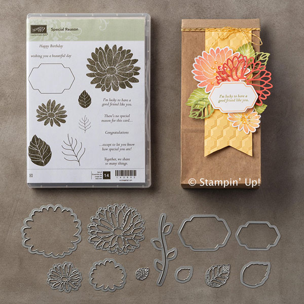 Special Reason Bundle has sold out, Special Reason Stamp Set still available from Stampin' Up!
