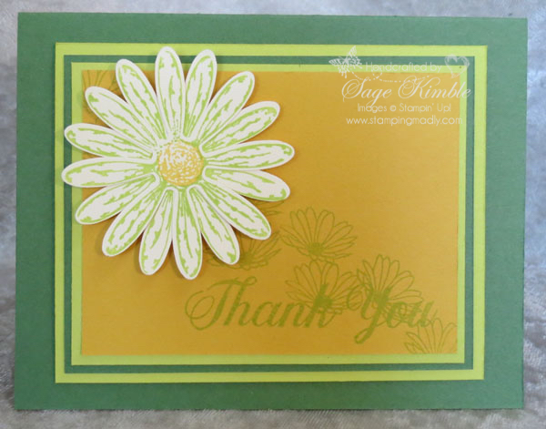 Lemon Lime Twist and Daisy Delight Stamp Set in handmade card from Stamping Madly
