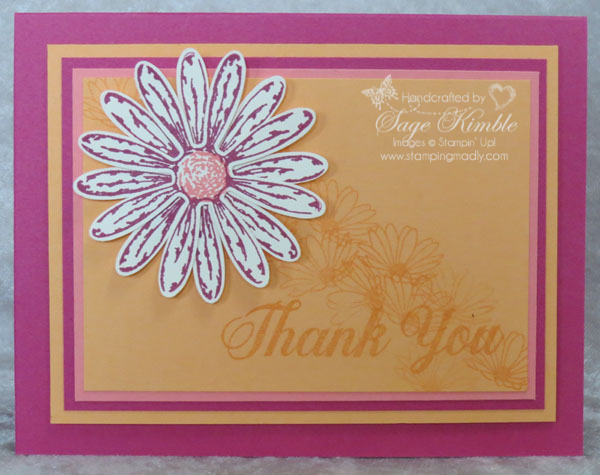 Berry Burst with Daisy Delight Stamp Set in handmade card from Stamping Madly