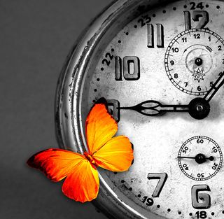 Clock with butterfly cropped__16370507