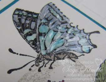 Nature Walk Butterfly from Stampin' Up!