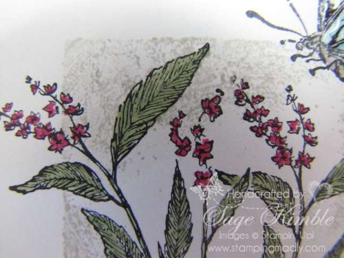 Detail--Nature Walk from Stampin' Up!