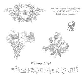 Click here to order Nature's Pace from Stampin' Up!