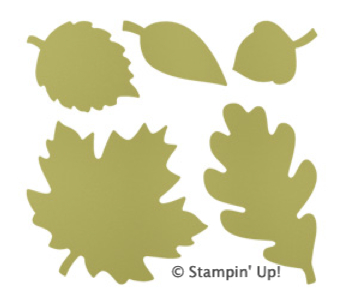 Click Here to order the Autumn Accents Die from Stampin' Up!
